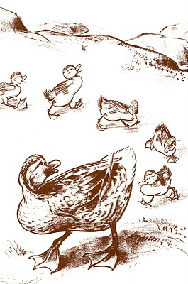 make_way_for_ducklings_mccloskey