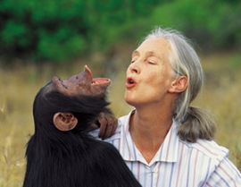 Jane-Goodall-Portrait
