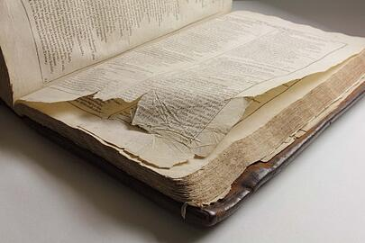 Protect rare books from environmental damage