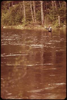 FLY_FISHERMAN_CASTING_FOR_SALMON_PD