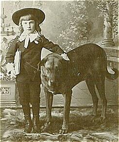 Little_Lord-Faunterley