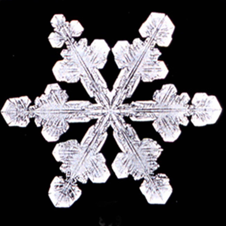 The Iconic And Groundbreaking Photography Of Wilson Snowflake Bentley