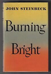 Steinbeck_Burning_Bright