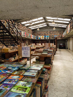 CDMX-84-Books-Tell-You-Why