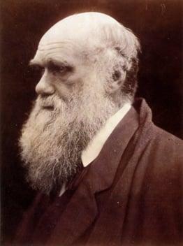 Charles_Darwin_by_Julia_Margaret_Cameron_3.jpg