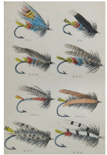 Full Color Plate of Nineteenth Century Trout Flies