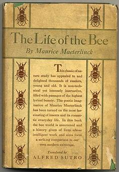 Life_of_the_bee