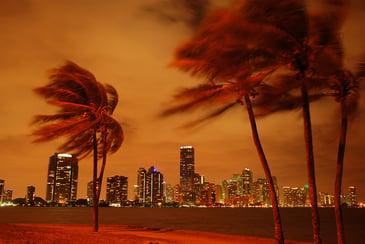 Miami_PD