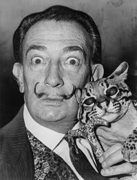 Salvador_Dali_cat